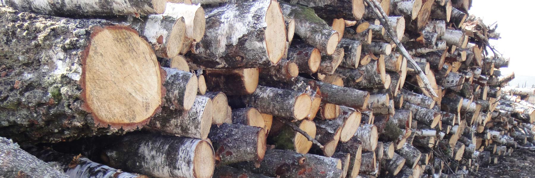 bois de chauffage h rault la sarl jullian vous propose diverses essences de bois dont le. Black Bedroom Furniture Sets. Home Design Ideas